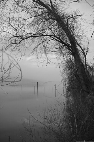 melancholypeacefultranquil fog alleghenyriver newkensington westmorelandcounty pennsylvania pentaxkr