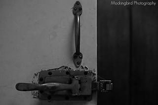 IMGP1033 | by Mockingbird Photographic