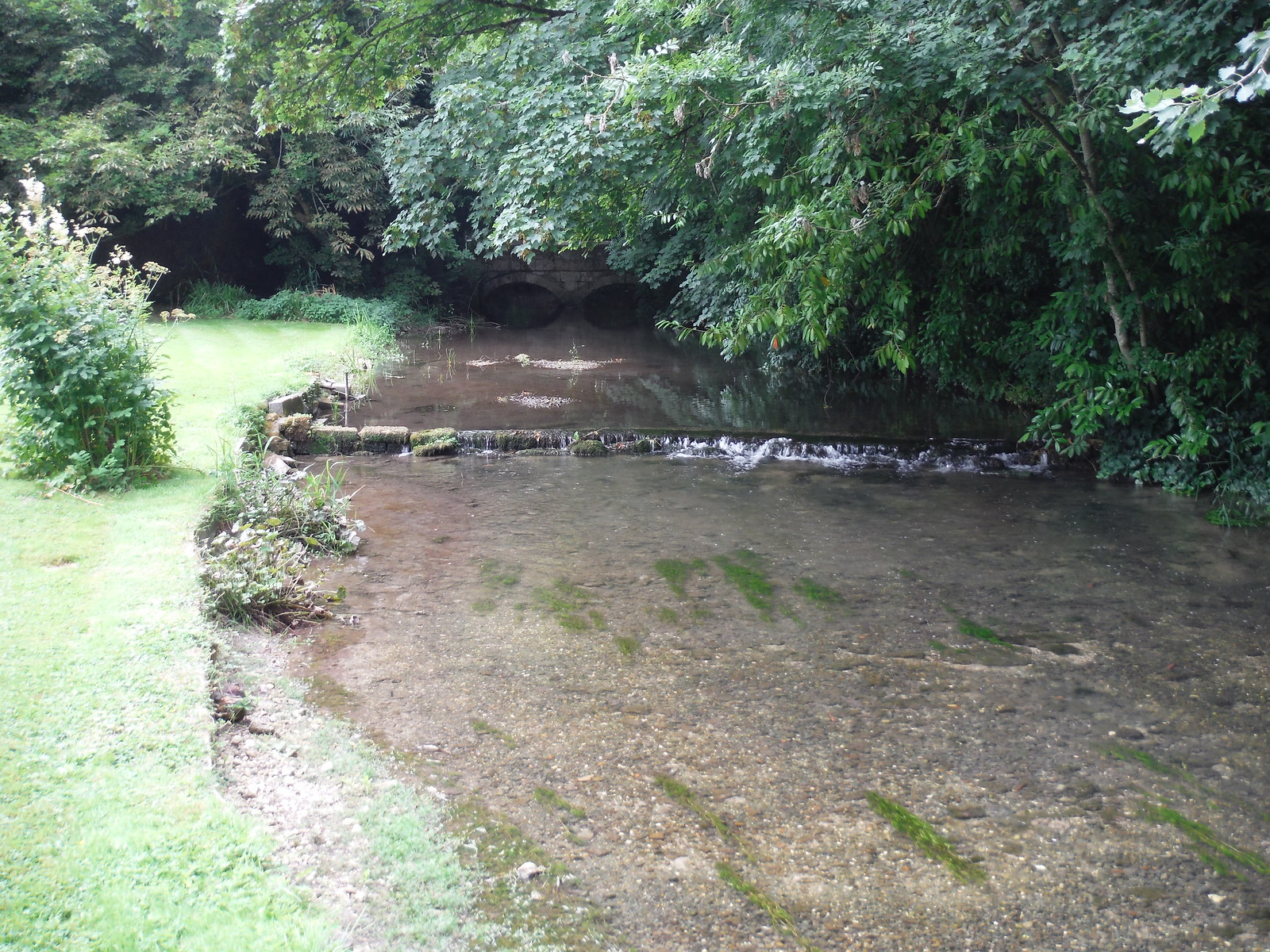 The Ebble River, Bishopstone SWC Walk 254 Salisbury Circular