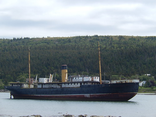 Harbour Grace - shipwreck