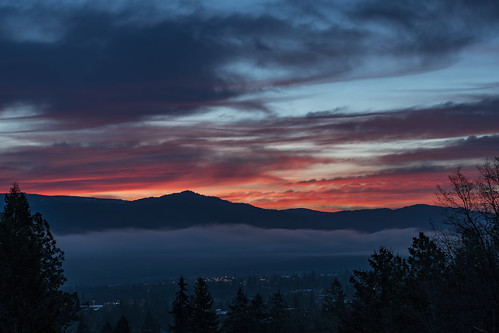 fog spring sunrise ashland oregon nikon d500 southern tamron 2470mm f28 al case
