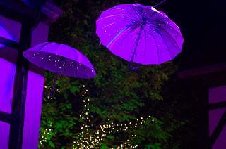 Violette Regenschirme | by Silaris Inc.