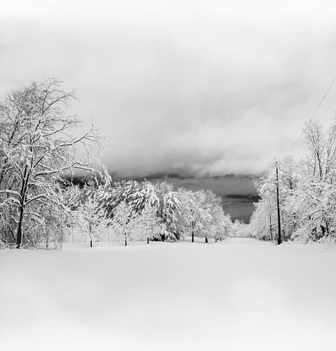 wyckoff nj fields trees snow storm long exposure panorama black white blackwhite monotone bw bergen county new jersey