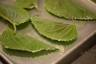 Korean Food - Kkaennip Jeon Perilla Leaves (Creative Commons)