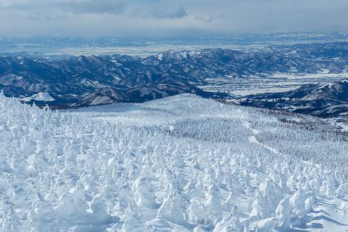 zao trees yamagata snow snowrime winter japan mountain 山形市 山形県 日本 jp
