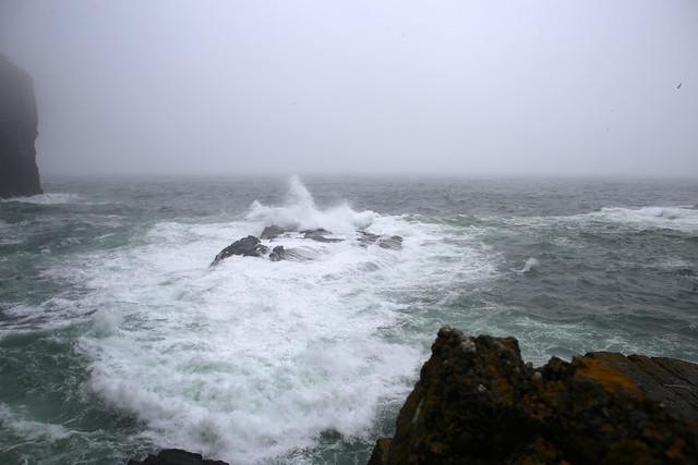 The coast at Whaligoe Haven