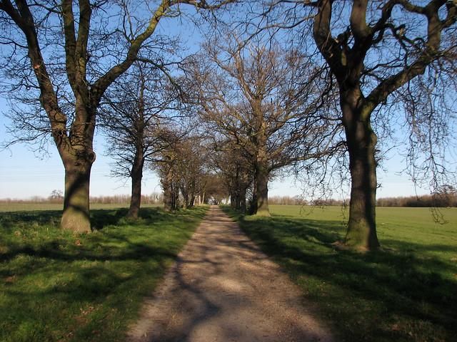 Footpath to Trimley