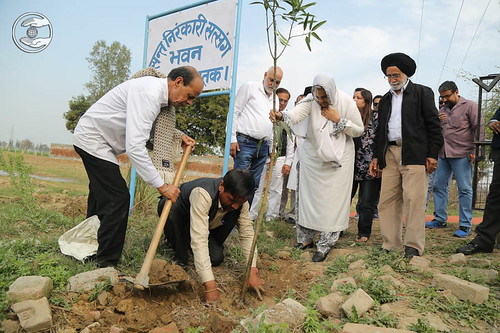 Tree Plantation at the land of Sant Nirankari Satsang Bhawan, Rohtak