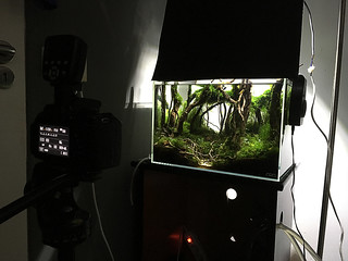 final shot ada 45p setup | by nigel_kh