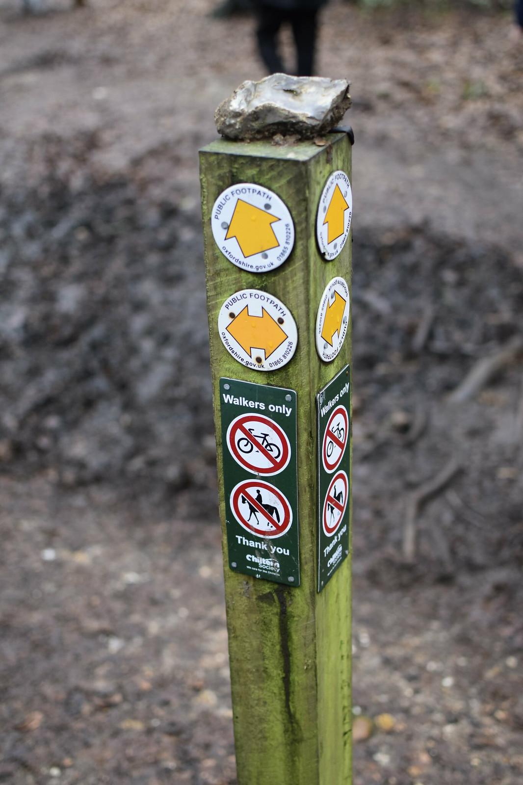 photo from walk Robertsbridge Circular walk Quiet, rolling hills, Bodiam Castle (NT), with a gentler finish.