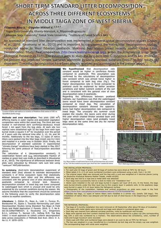 Short-term Tea Decomposition experiment in Mukhrino poster