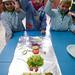 Colegio alimentos ECO 6