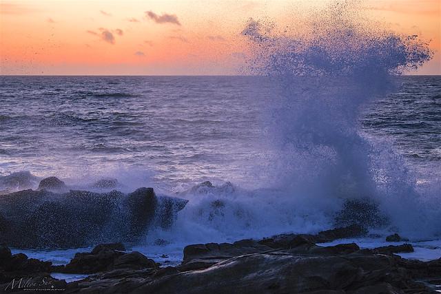 Violet Splash Waves