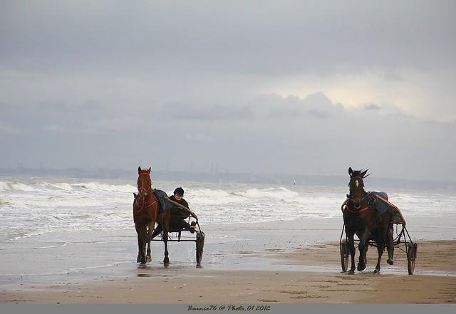 Entrainement sur la plage un jour de brume