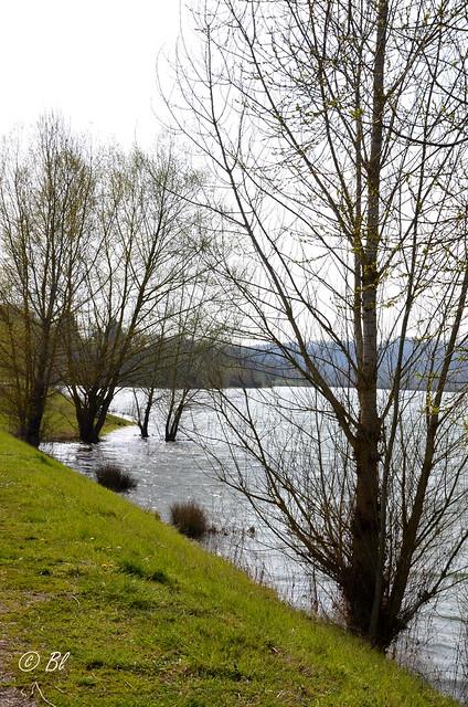 C'est encore un soleil d'hiver qui illumine le lac