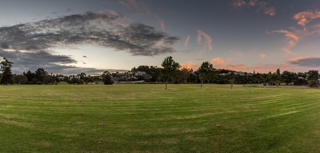 Onepoto Domain, Auckland.