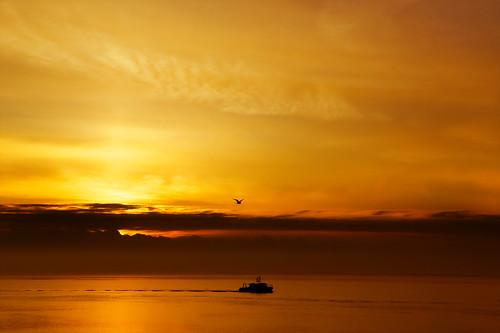 dawn morning orange vessel boat survey water tidal humberestuary hull sunrise