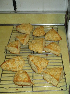 Sour cream and ginger scones | by The Bubbo