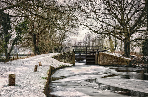 surrey england winter landscape nikon d7000 lightroomcc snow cold riverwey canal
