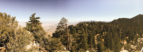 américadonorte california califórnia coachellavalley estadosunidosdaamérica mountsanjacinto northamerica palmsprings usa landscape nature travel trees árvores