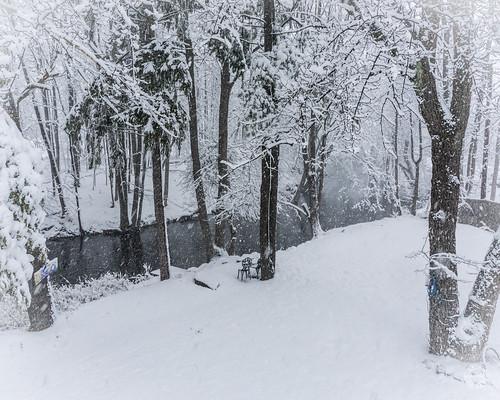 trees creek orangecounty storm warwick unitedstates regions newyork home northamerica rural conditions stones snow us