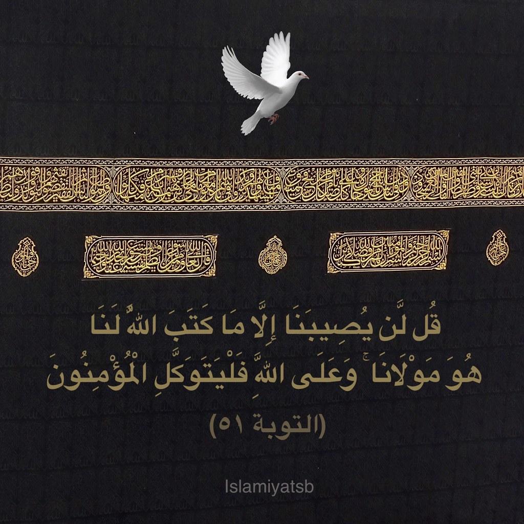 قل لن يصيبنا إلا ما كتب الله لنا Saleh Badrah Flickr