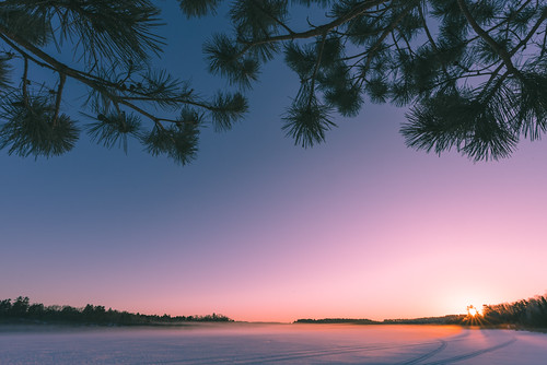 armstrongbay armstrongbaydayusearea lakevermilion minnesota tower frozen lake snow statepark sunrise trees winter unitedstates us
