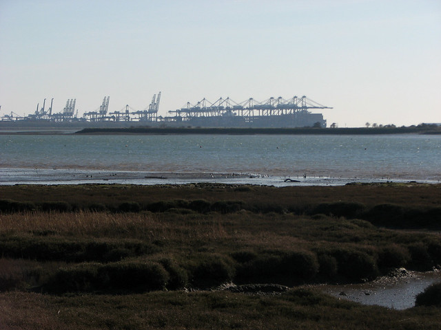 The Port of Felixstowe from Levington