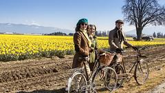 Dandy Daffodil Tweed Ride-3