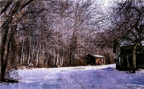 shack cabin winter pennsylvania danielsvillepa lehighvalley landscape carolynlandi nature outdoors texture lighting colorful northamptoncounty usa coth5 texturebybefunky befunky