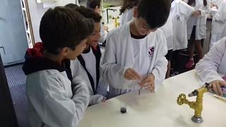 Aula prática de Ciências: célula da cebola - 7º ano (mar/2018)