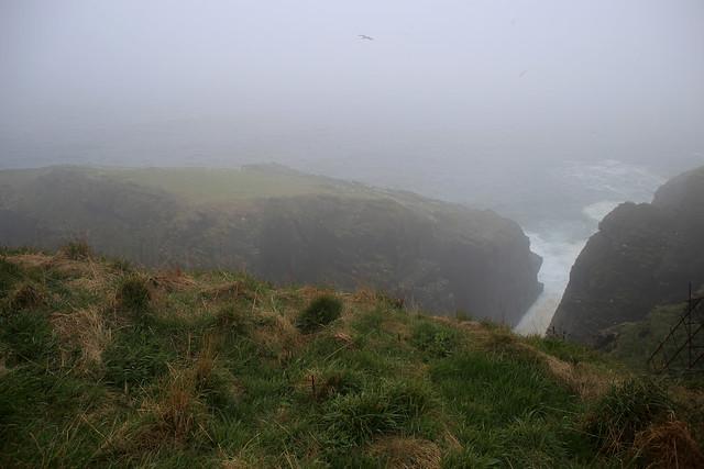 The coast near Clyth