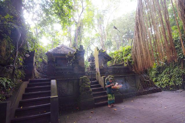 Ceremony in the jungle...