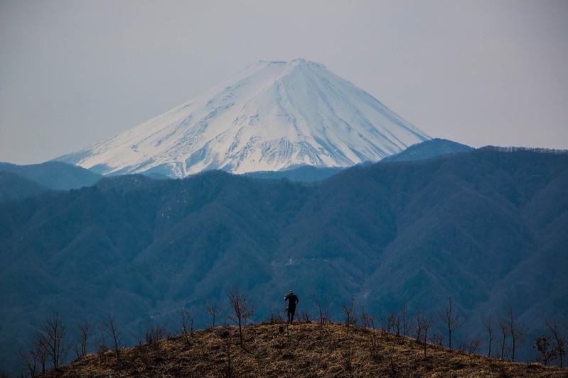 20150412-甲州高尾山-0322.jpg