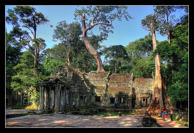 Siem Reap K - Ta Prohm 06