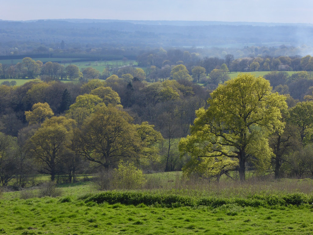 Escarpment view Sevenoaks Circular walk