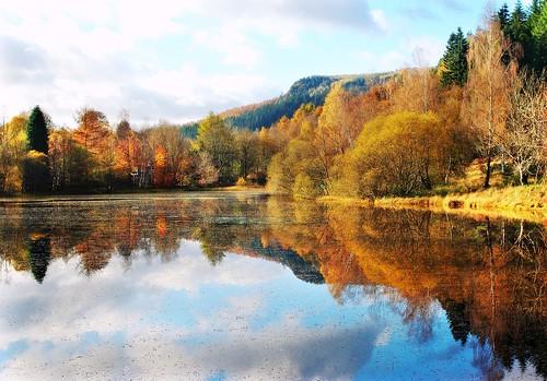 ericrobbniven scotland polneyloch waterscape trees autumn dunkeld