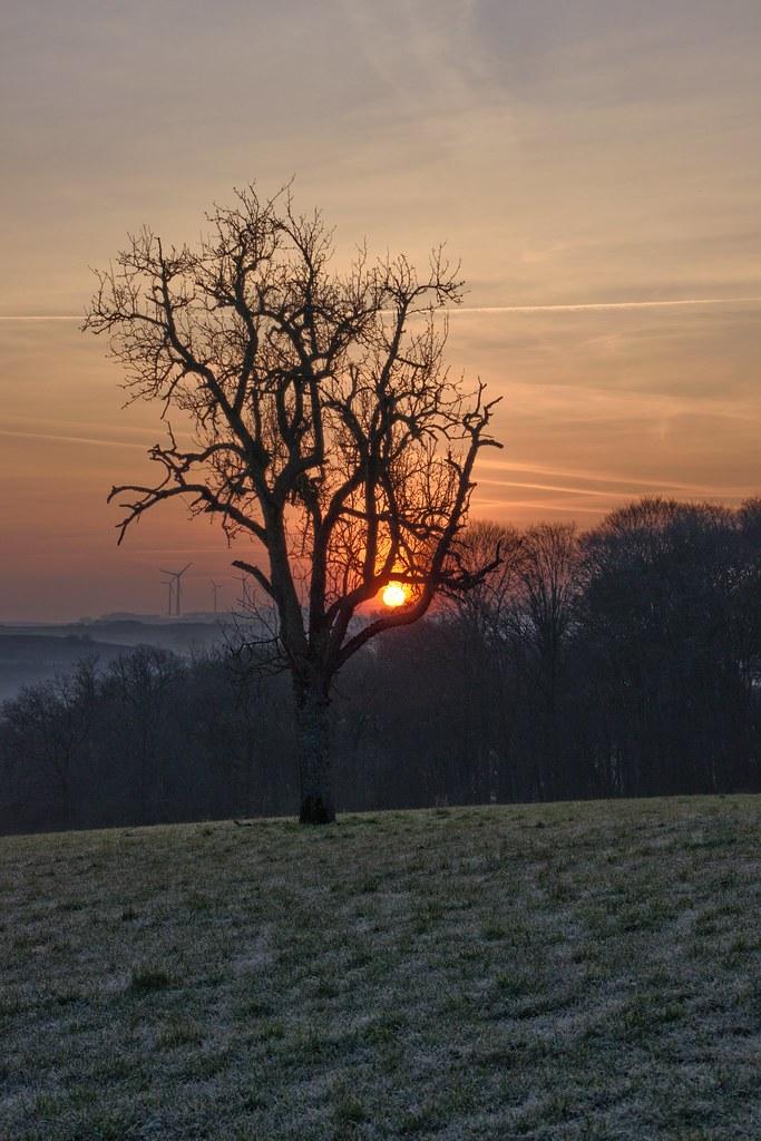 Guten Morgen Sonnenschein Kristine Flickr