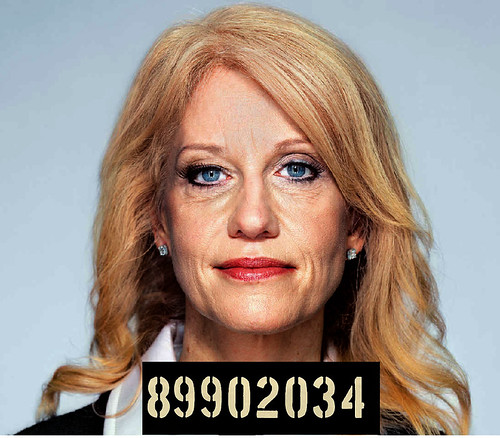 Kellyanne Conway Leaving White House, Not Even Indicted Yet