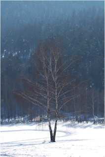 Winter in Rakowa | by RysiekLL