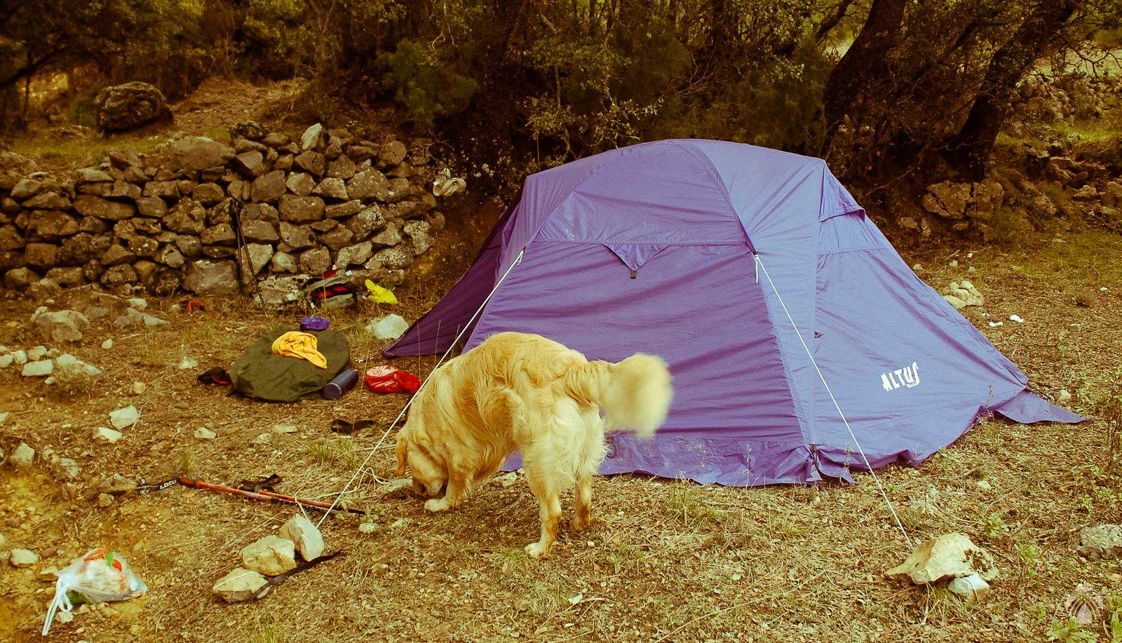 Campamento en el Prado de Juan Ruiz