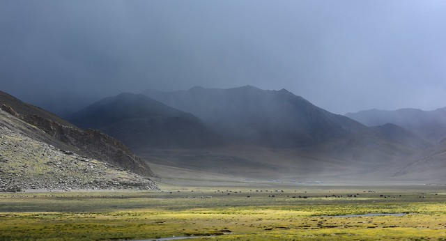 Nomadsland, Tibet 2017