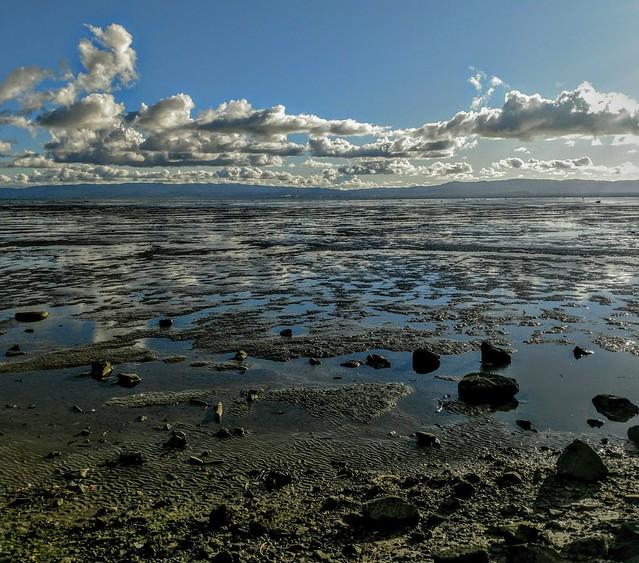 San Francisco bay, low tide