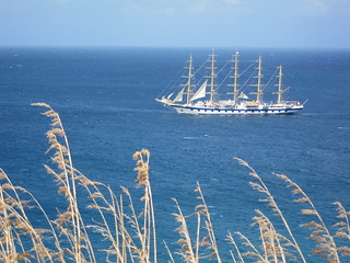 Royal Clipper and Tall Grass | by Chris Hunkeler