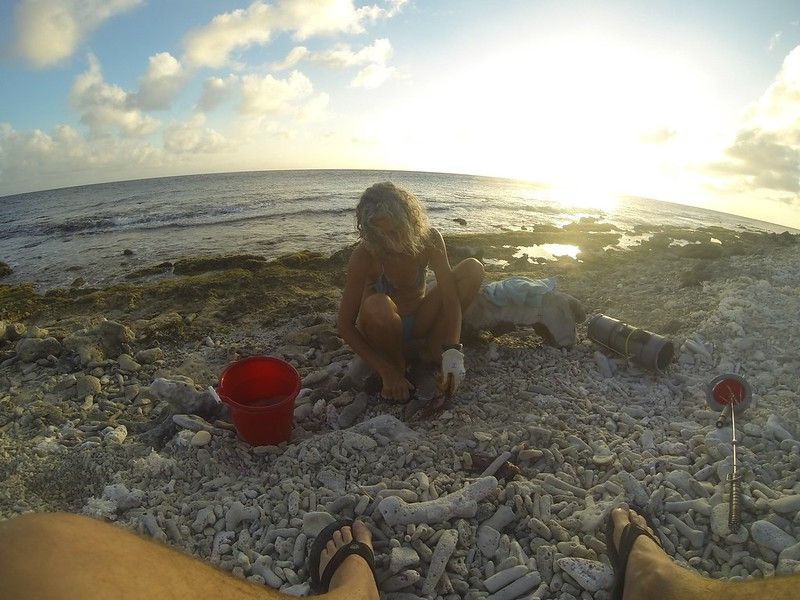 B-Feb 6th 2014 Bonaire Lion Fish Gooodive Go Pro Photos 77