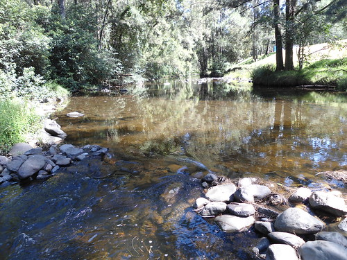 wokonationalpark australia nsw newsouthwales manningriver river
