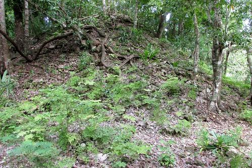 Chacchoben - Unexcavated Ruins