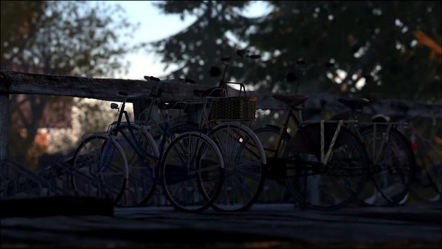 Bicycle Row #BorneoContest