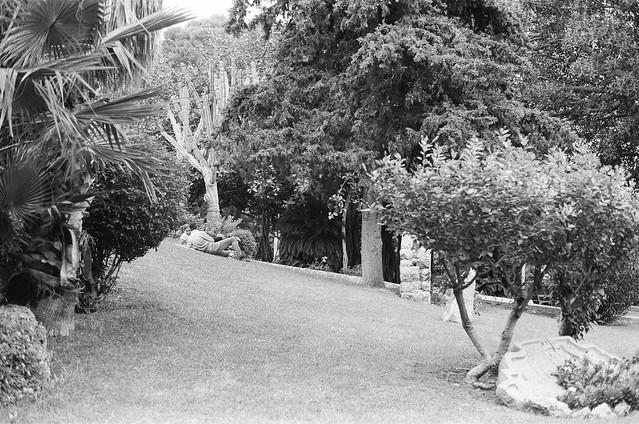 Park (35mm film)