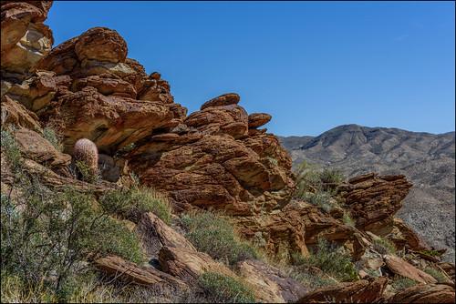 boulders sage cactus aguacalienteindiancanyons palmsprings martinsmith ©martinsmith nikond750 landscape california unitedstates us cacti